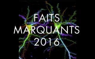 Faits marquants 2016