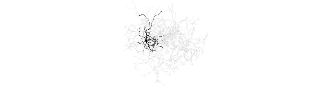 Trois neurotransmetteurs et la maladie de Parkinson