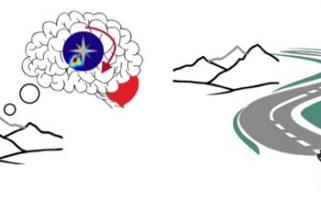 Le cervelet stabilise notre carte mentale